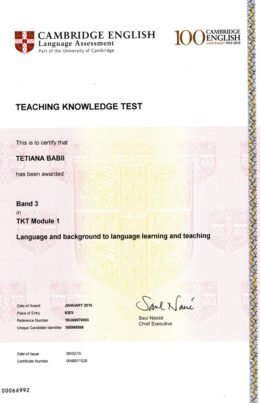 Teaching Knowledge Test (TKT)