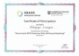 sinievych how to teach ielts productive skills
