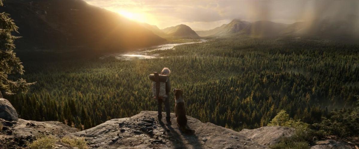 Почему стоит посмотреть фильм The Call of the Wild