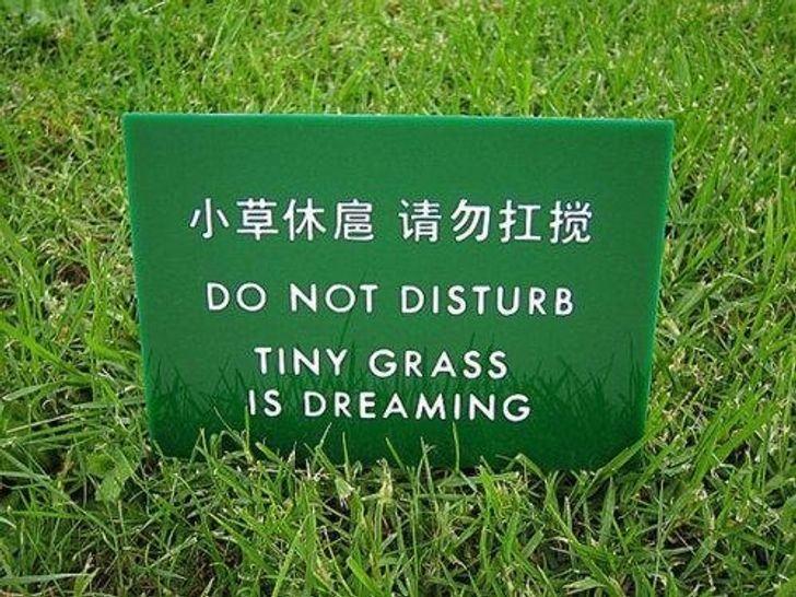 что нужно знать переводчику