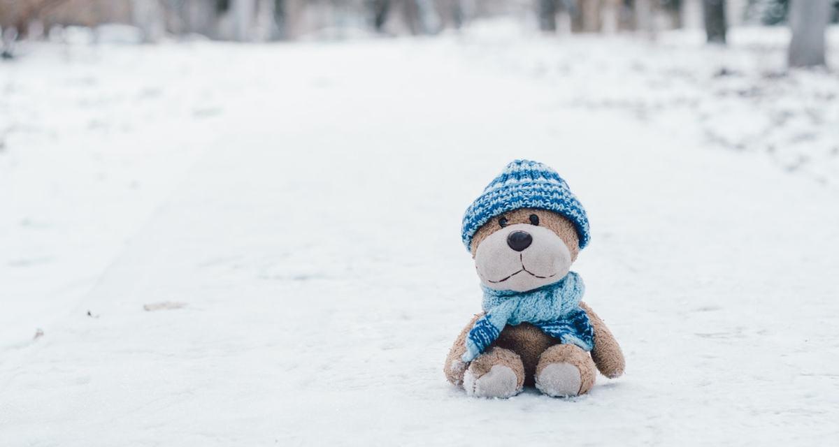 Непогода, снег, но мы не отменяем знания