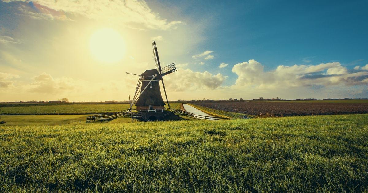 Топ-5 английских поговорок про голландцев
